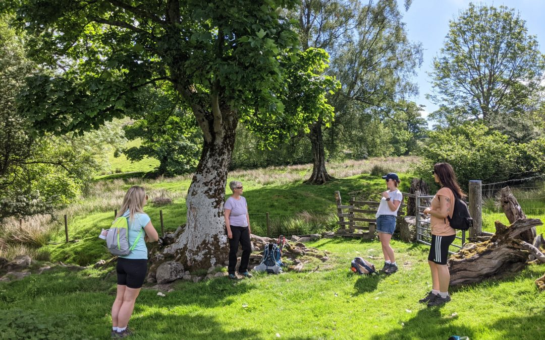 Embrace the Welsh feeling of cwtch (hug) with a Mindful walking break in North Wales this autumn